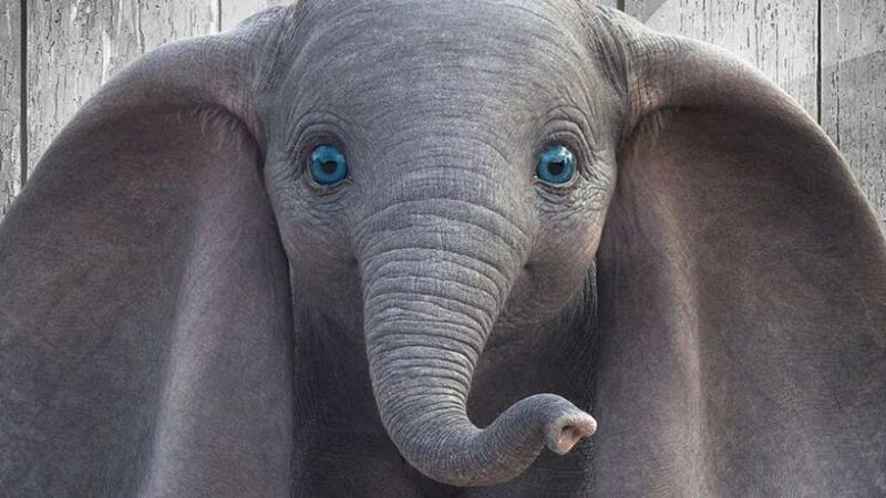 Dumbo – Quando Burton Torna A Casa